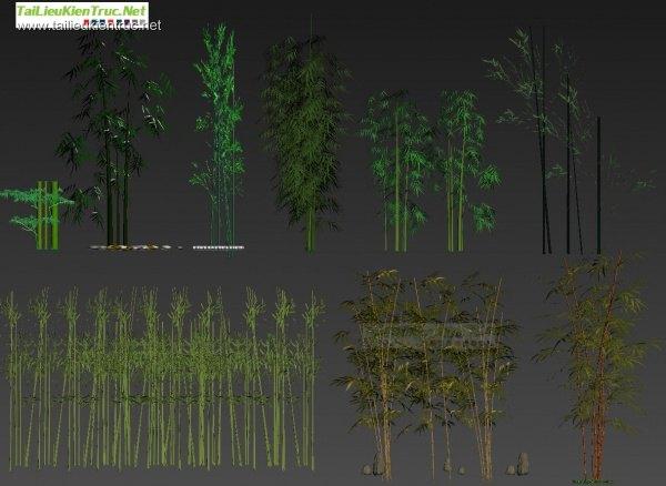 Thư viện 3ds Max tổng hợp về tre trúc Việt Nam - Bamboo Full