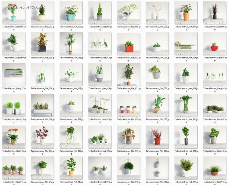 Thư viện 3d tổng hợp 48 Model về các Chậu Cây nhỏ trang trí