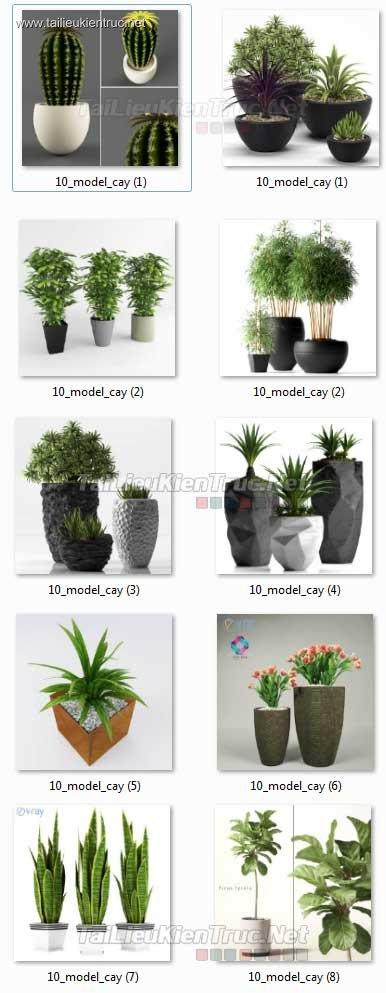 Thư viện 3d tổng hợp 10 Model về các loại Chậu cây trang trí đẹp chất lượng