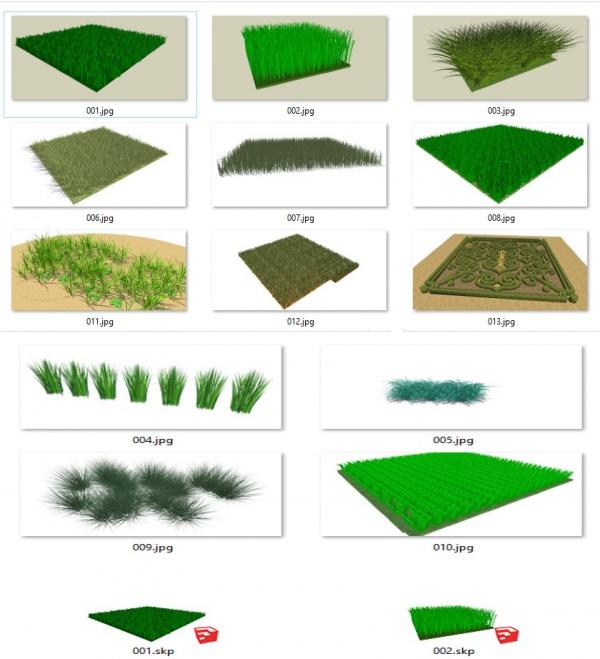 Thư viện Sketchup tổng hợp 13 Model về các loại cỏ P21