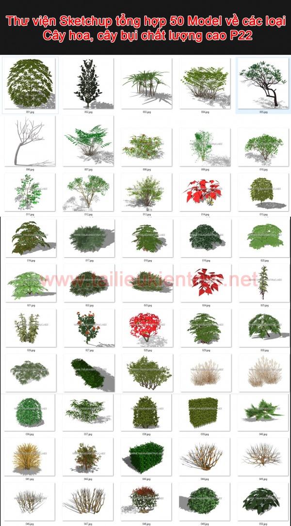 Thư viện Sketchup tổng hợp 50 Model về các loại Cây hoa, cây bụi chất lượng cao P22