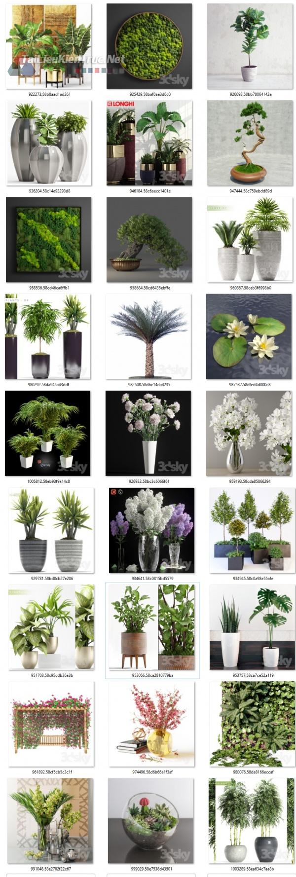 Thư viện 3dsmax gồm 27 model cây rất đẹp và chất lượng với dung lượng 1.1GB