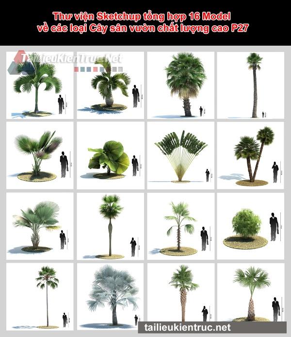 Thư viện Sketchup tổng hợp 16 Model về các loại Cây sân vườn chất lượng cao P27