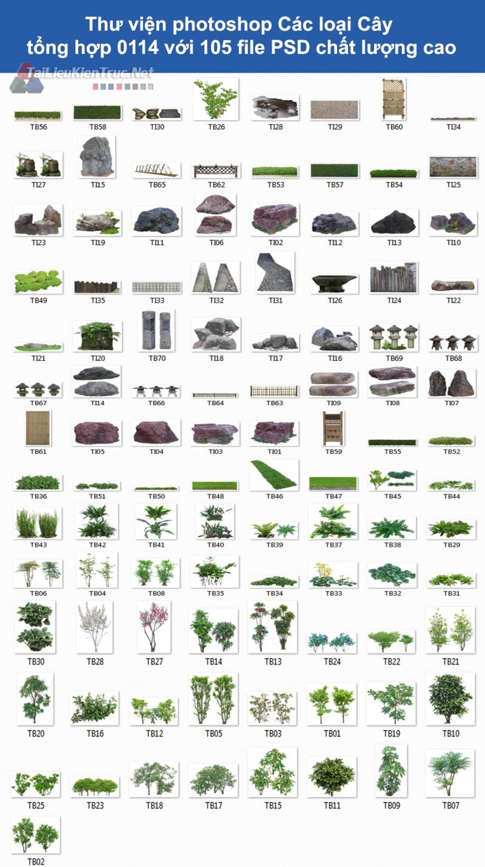 Thư viện photoshop Các loại Cây tổng hợp 0114 với 105 file PSD chất lượng cao