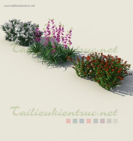 3d cây bụi dành cho thiết kế cảnh quan sân vườn