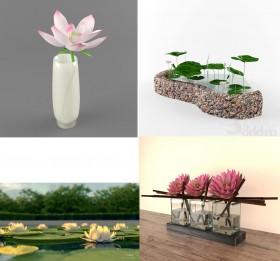 Thư viện 3ds Max tổng hợp về Hoa sen lotus