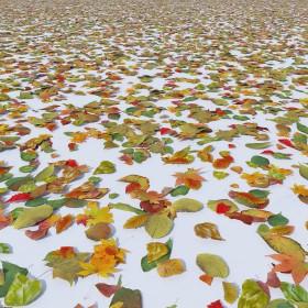 Thư viện 3d Model lá mùa thu rơi download
