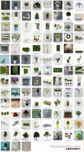 Thư viện 3d tổng hợp 107 Model về các chậu cây trang trí chất lượng và đẹp P25