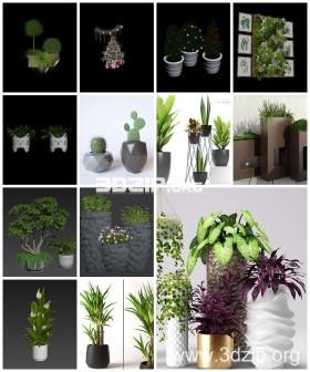 Thư viện 3d tổng hợp 13 Model về các chậu cây trang trí chất lượng và đẹp P26