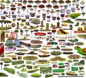 Thư viện photoshop Các loại Cây tổng hợp 090 với file PSD chất lượng cao