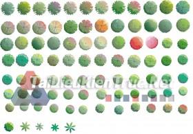 Thư viện photoshop Các loại Cây cối mặt bằng tổng hợp 097 với file PSD chất lượng cao