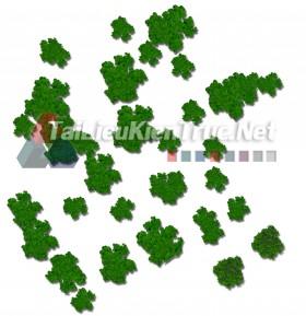 Thư viện photoshop Các loại Cây cối mặt bằng tổng hợp 099 với file PSD chất lượng cao