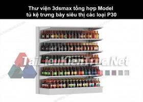 Thư viện 3dsmax tổng hợp Model tủ kệ trưng bày siêu thị các loại P30