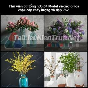 Thư viện 3d tổng hợp 04 Model về các lọ hoa, chậu cây chất lượng và đẹp P67