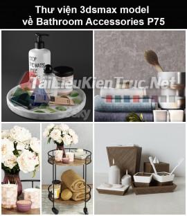 Thư viện 3dsmax model về Bathroom accessories (Đồ dùng phòng tắm) P75