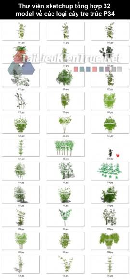 Thư viện Sketchup tổng hợp 32 Model về các loại cây tre trúc P34