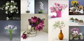 Tổng hợp 10 model lọ hoa đẹp file 3dsmax